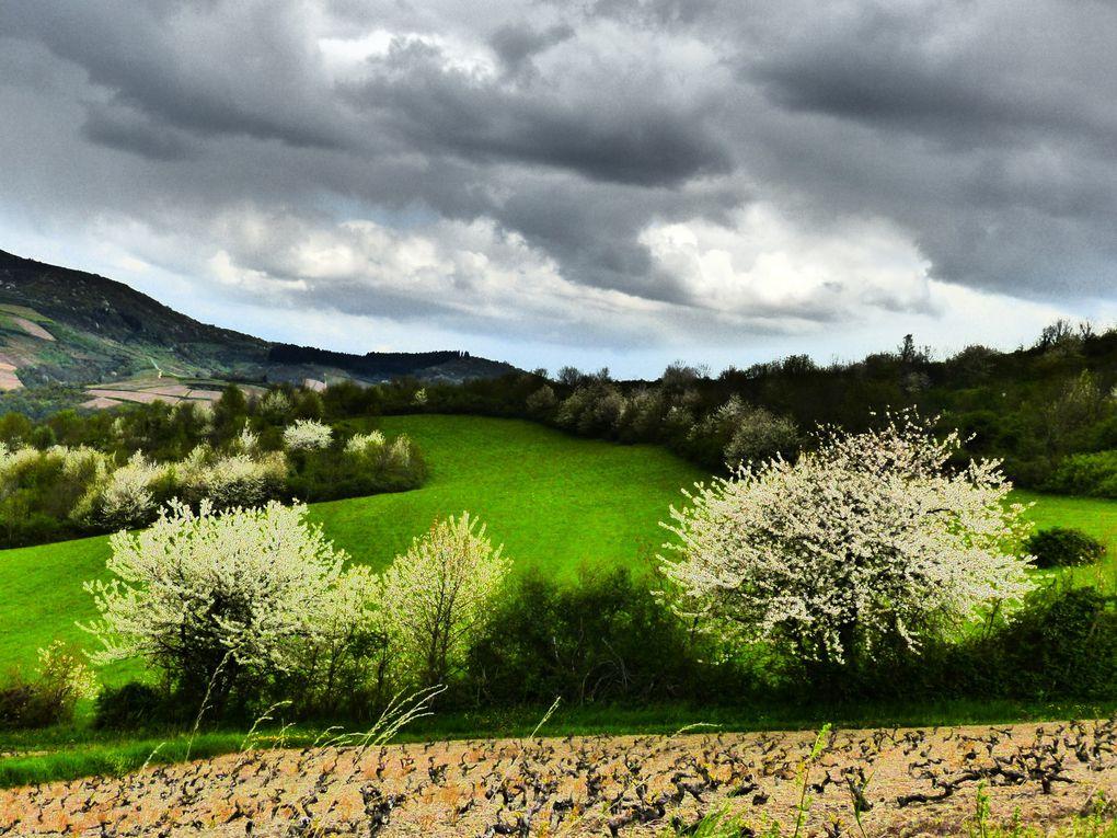 Dimanche 24 Avril dernier repérage, avec parcimonie nous avons eu pluie, neige, vent, soleil, froid, ............. !!! merciiiiiic