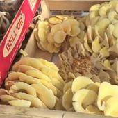 Les champignonnières de Sologne seront tous les jeudis au marché des Forges ! - Vierzonitude