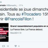 """Rassemblement du Trocadéro: la """"cathosphère"""" veut sa revanche"""