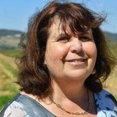 Gilets jaunes : un commando nocturne de 40 personnes chez la députée de l'Aude Mireille Robert
