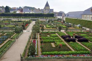 VILLANDRY : des jardins tirés aux cordeau (2/3)