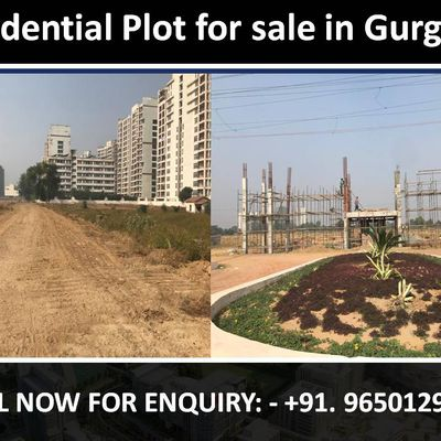 Plot for sale in Gurgaon || 9650129697