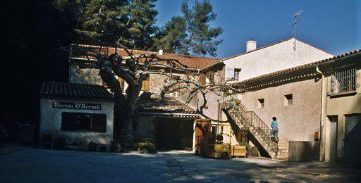 """Cave coopérative des vins de Bandol """"Moulin de la Roque"""""""