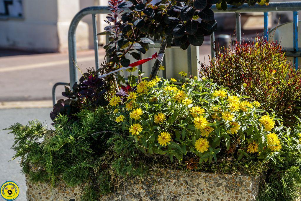 Castellane  visite pour le maintien label  deuxième fleur « Villes et villages fleuris label pour la qualité de vie ».