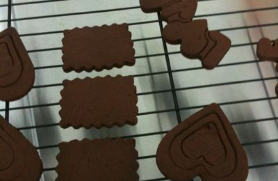 GALLETAS DE CHOCOLATE.
