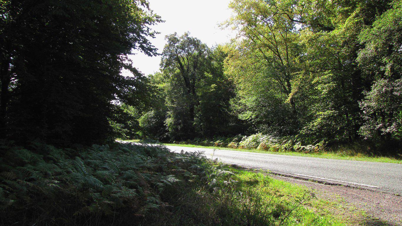 le carrefour du Parquet de Bois