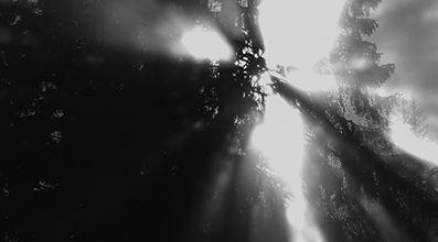 Lumière diffuse