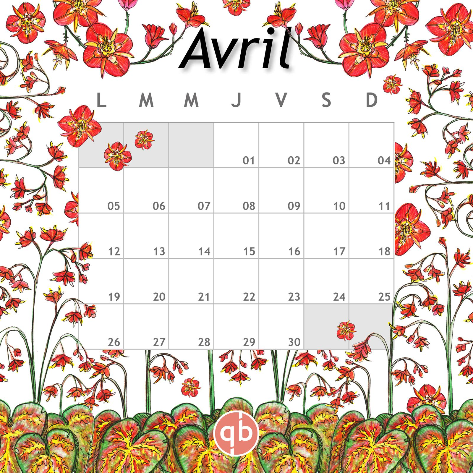 Calendrier Avril Epimedium 2021 QB-Paysages