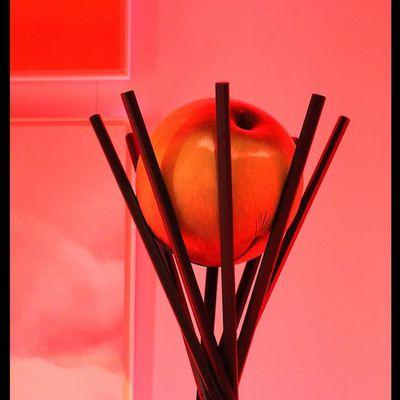 photo-plume.over-blog.com