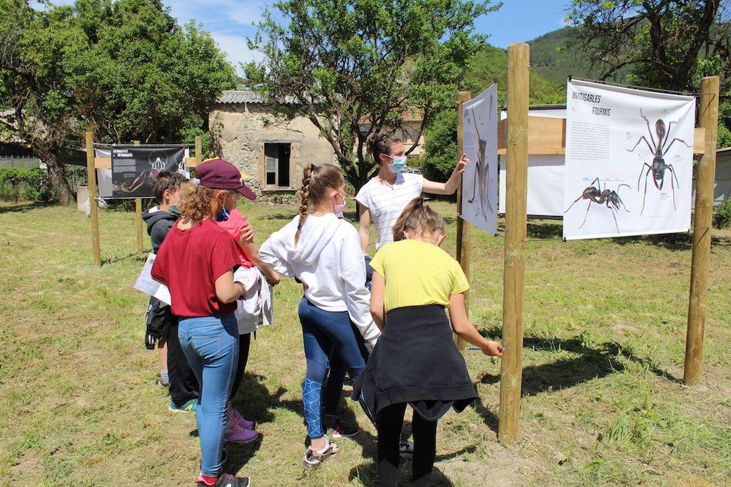Une quarantaine d'élèves avaient ''rendez-vous aux Jardins'' à Barrême… avec les insectes!
