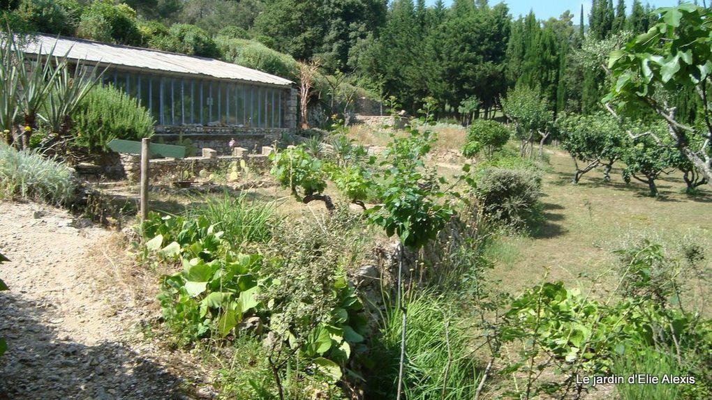 Situé à La Roquebrussanne, un joli village de la Provence Verte, le jardin d'Elie est d'abord un jardin de rocaille, mais c'est aussi un exemple de choix de vie, par ce précurseur qu'était Elie Alexis.
