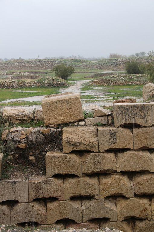 Bishâpur ville fondée en 266 par Shapur 1ier roi SASSANIDE et détrute par les arabes en 637 - mais il persiste les restes d'un palais (salle de 22m X 22 m surmontée d'une coupole immense) et d'un temple de feu.