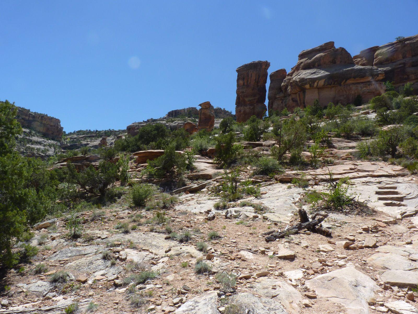 Découverte du Colorado National Monument