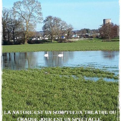 Le Liriot..