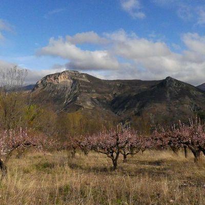 Montagne du Poët