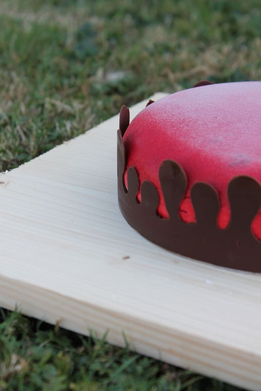 #Entremets du moment version framboise