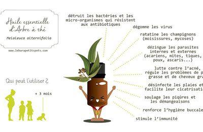 Inhalation tea tree sinusite