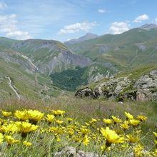 Pétition : Non au passage du Tour de France au Col de Sarenne (GR54)