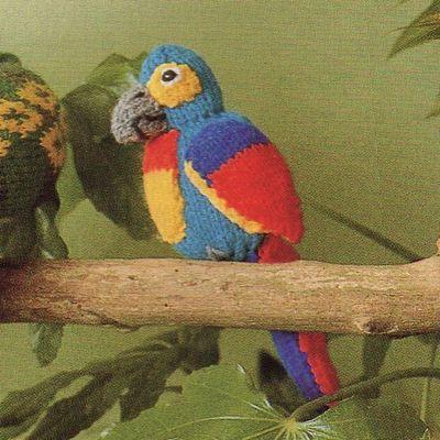 Tutoriel tricot - Perroquet