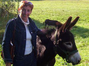 """Expo """"l'âne dans tous ses états"""" Christine Dufour"""