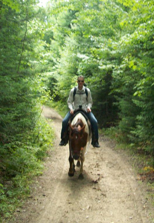 Album - za - 100824 Equitation-Mont-Megantic