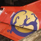 Taiwan plane crash-lands in river