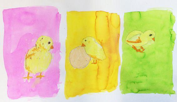 Poussins dessinés au pastel gras et encres colorées