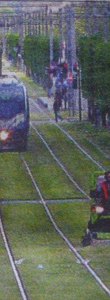 Pas facile de tondre sur les rames du tramway...
