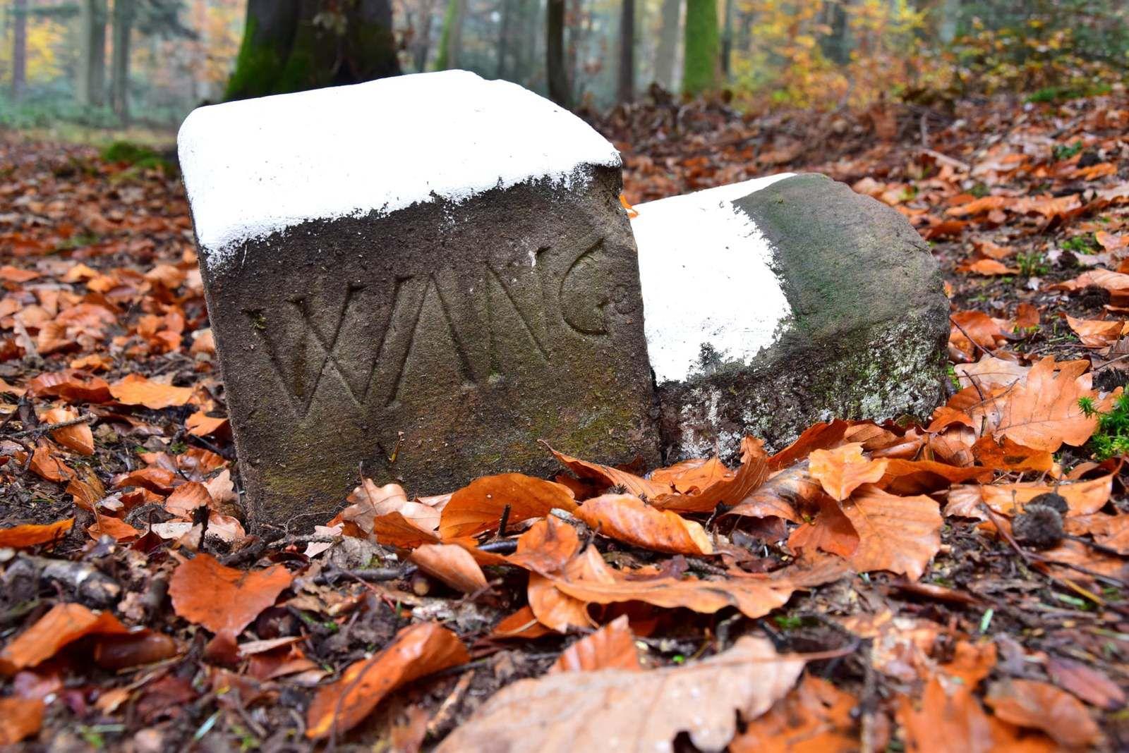 Cette borne porte les lettres WANG pour Wangen