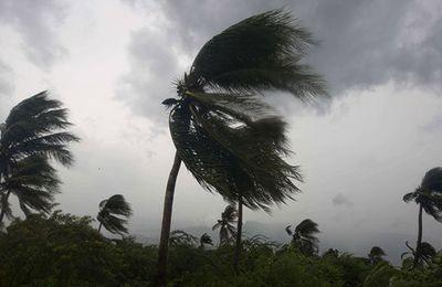 Une partie de Madagascar encore sinistrée 4 mois après le passage du cyclone Enawo
