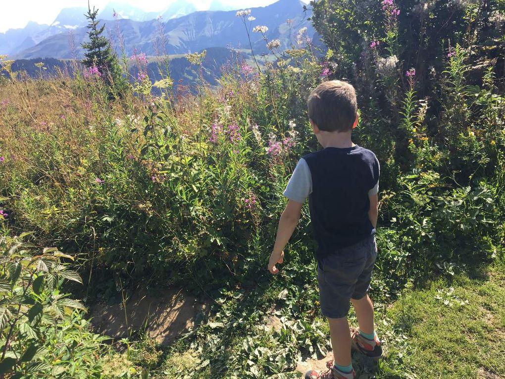 Notre semaine à la montagne - Val d'Arly