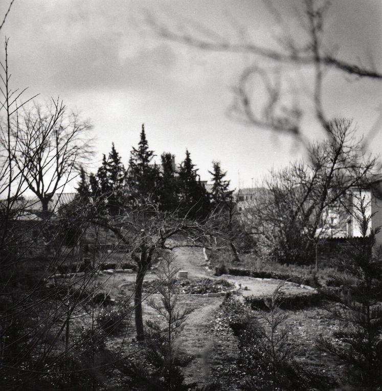 Saint Georges d'Orques,1995. Jardins privés.( Extraits de Saisons à Saint Georges ouvrage collectif)