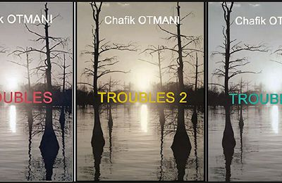 *TROUBLES* Tomes 1-2 et 3* Chafik Otmani* Books on Demand* par Nathalie Courchesne*