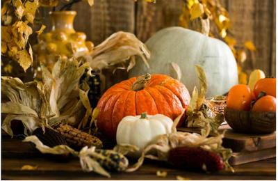 Thanksgiving: soyons reconnaissants pour la résilience dans la vie et l'agriculture