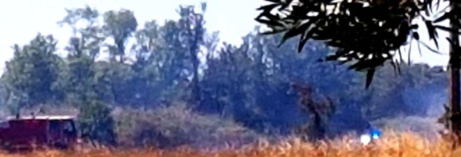 Incendie dans les champs vers le quartier Sainte Aubine - Bénoïdes