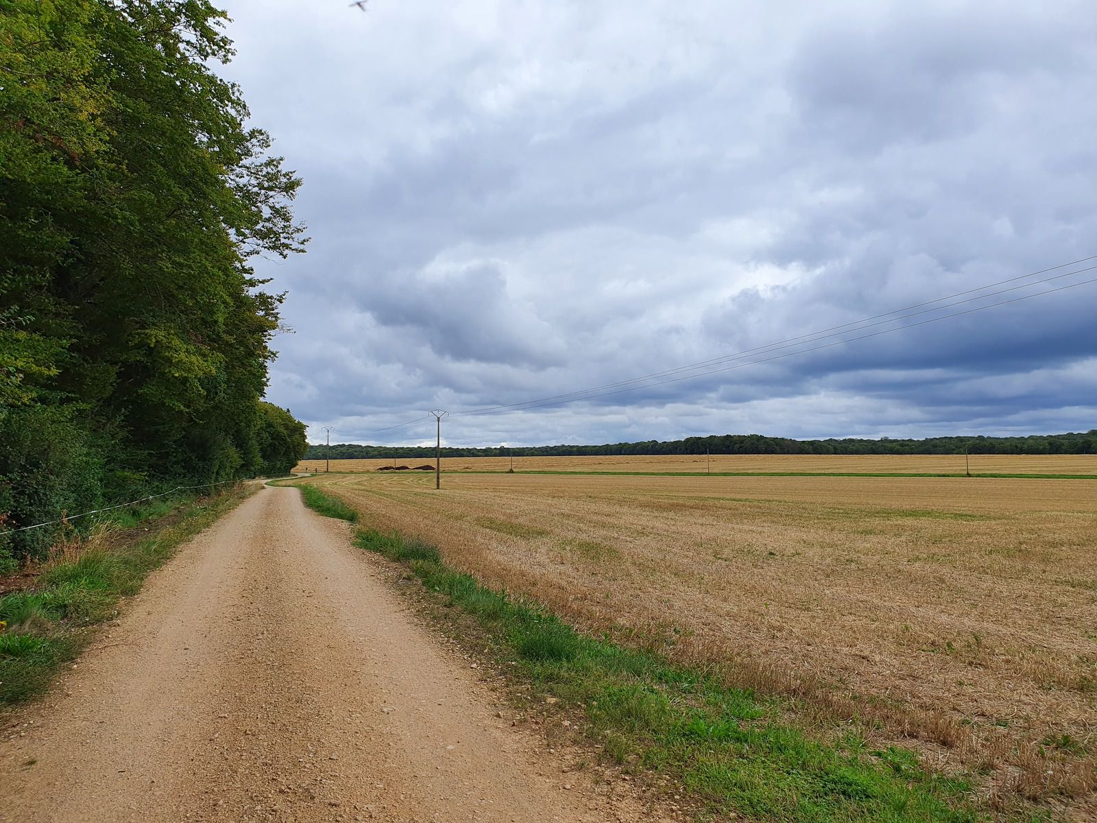 Les Essarts et les Longues Raies, à Châteauvillain
