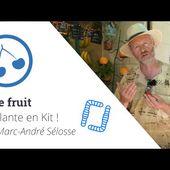 La Plante en Kit ! Ep3 - Le fruit, avec Marc-André Sélosse