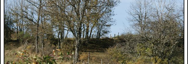 Paysage d'automne entre Lozère et Haute-Loire