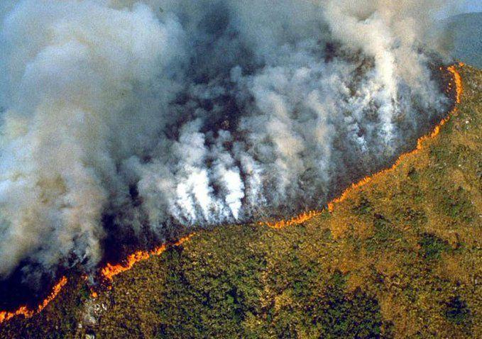 Terrible: La forêt amazonienne s'embrase depuis 16 jours. Bolsonaro laisse faire (photos)