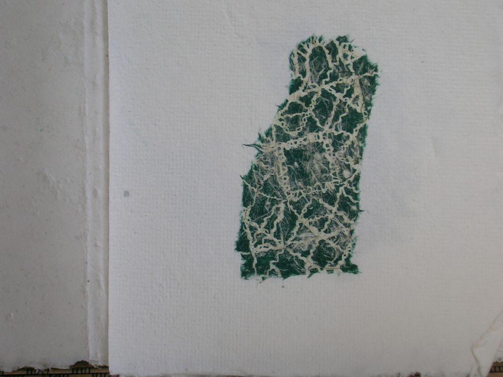 fragments de dentelles sur papier japon et algues vertes