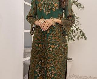 Find The Best Pakistani Web Articles of clothing Stores In The USA