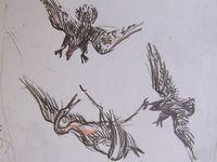 """Etudes pour """"L'atelier du peintre 5 - La peinture a des ennemis""""   Crayons noir et rouge sur papier    30X50    Bhavsar"""