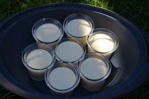 Mousse de fromage blanc avec thermomix  8 💚6💙💜