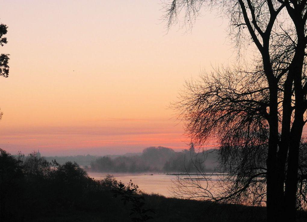 Cet album vous permettra de suivre régulièrement les observations d'actualité sur le territoire de Mardié-Est et sur la Loire... et vous incitera à venir les faire vous-même !