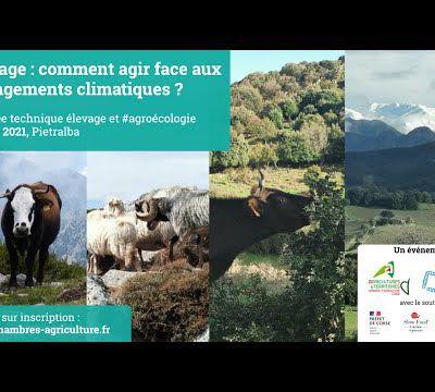 Live - Journée technique sur les pratiques agroécologiques en élevage