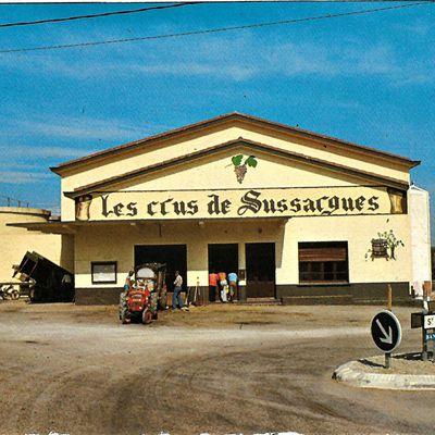 SUSSARGUES (Hérault)