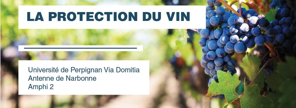 La protection du prix du vin, intervention au colloque sur la protection du vin