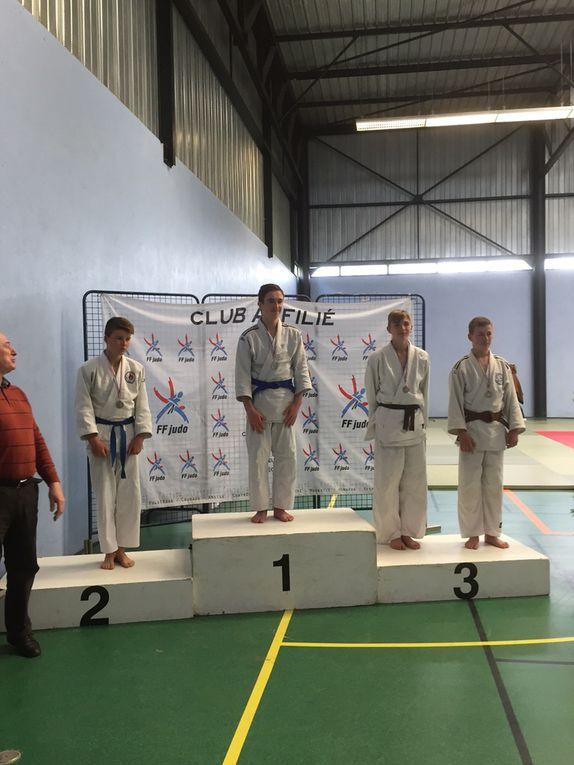 Sept podiums sur les dix combattants sélectionnés au départemental minime.