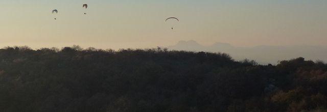 Voler comme des oiseaux pour # photodimanche...
