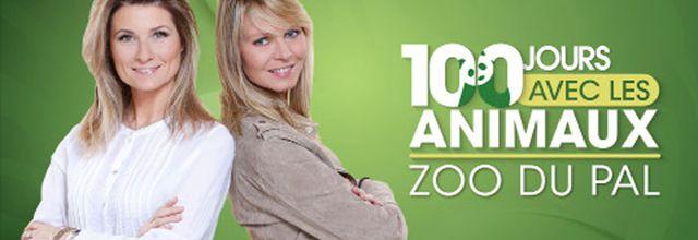 """Le deuxième épisode de """"100 jours avec les animaux du PAL, le plus grand zoo d'Auvergne"""" ce soir sur C8"""